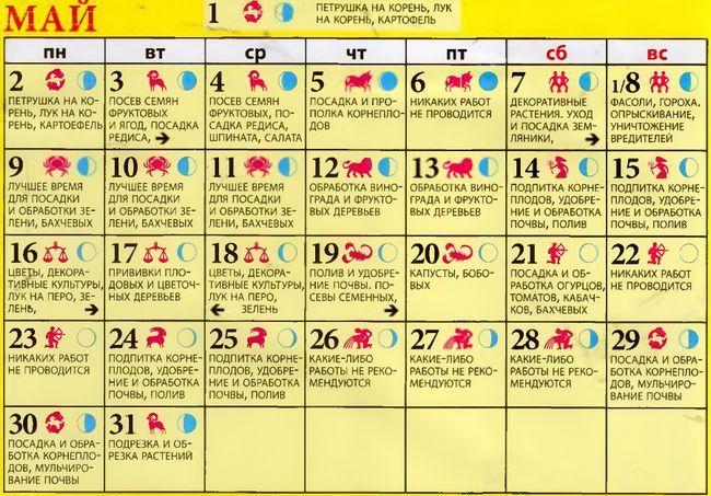 календар орогодніка 2016