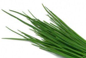 Багаторічний зелена цибуля: вирощування